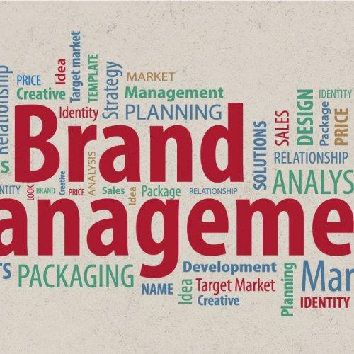 Brand Management at Snowball Creative Group